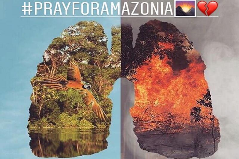 Amazónia  tragédia  környezeti válság  tudatosság  felelősség