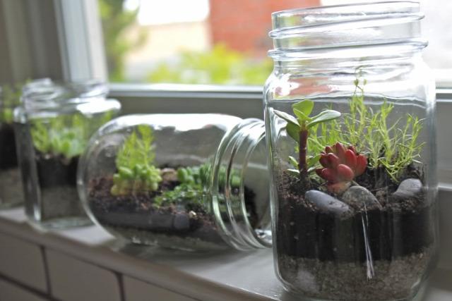 DIY üvegház dekor minikert