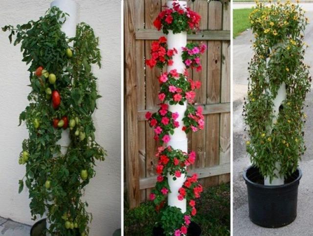 balkonkertészet otthon DIY függőleges kert