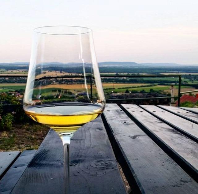 tudatos vásárlás bor egészséges életmód