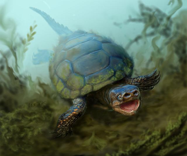 dinoszaurusz teknős disznó