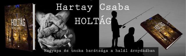 Magyar 4 Könyvajánló Felnőtt Dráma