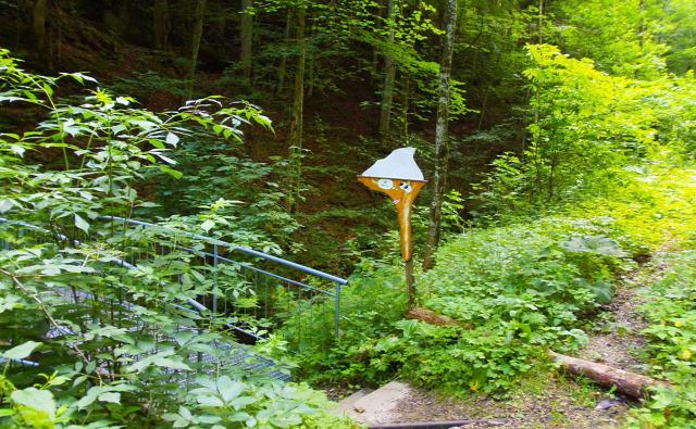 Ausztria Alsó-Ausztria Ötscher túraút