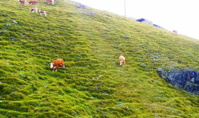 Ausztria Karintia Salzburg tartomány libegő hegy Katschberg Aineck