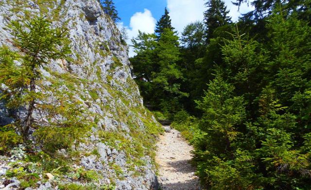 Ausztria Alsó-Ausztria szurdok hegy Schneeberg Weichtalklamm