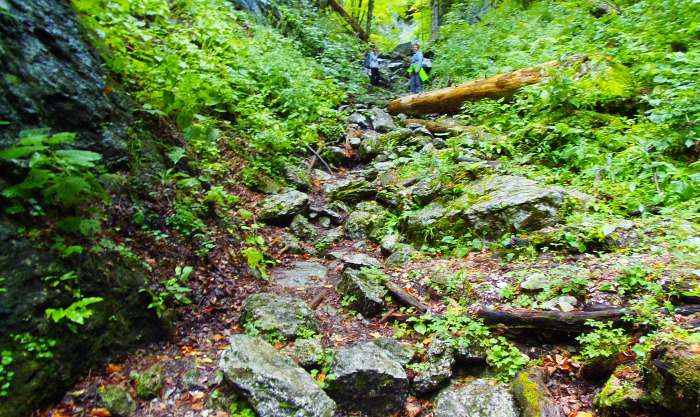 Ausztria Alsó-Ausztria Schneeberg hegy szurdok libegő Weichtalklamm csúcskereszt túraút