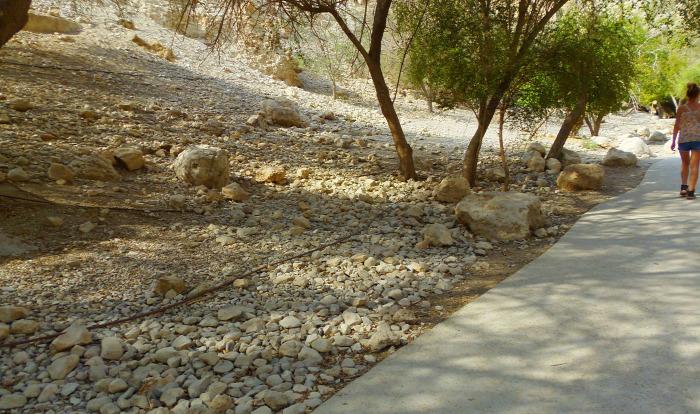Izrael szurdok túraút En Gedi