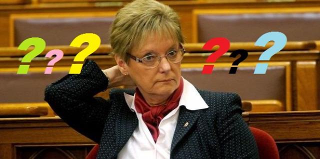 Hoffmann Rózsa Rózsa néni közoktatás érvelés érvelési hiba oktatás hamis dilemma