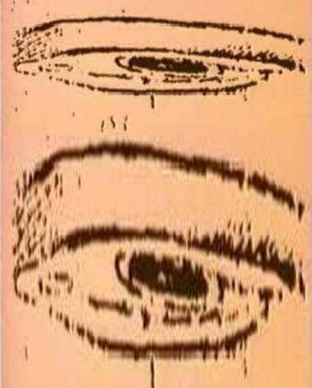 optikai optikai csalódás optikai illúzió illúzió da vinci szem holbein követek