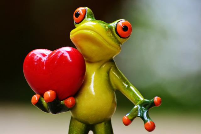 szerelem párkapcsolat tipp csernus értékelés boldogság boldog