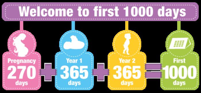 pályázat étel étkezés 1000 első 1000 nap baba terhesség kisgyermek táplálkozás bejutas