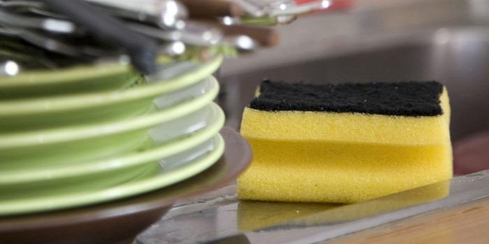 egészség mindennapi mosogatás mosogatószivacs szivacs baktérium milyen gyakran