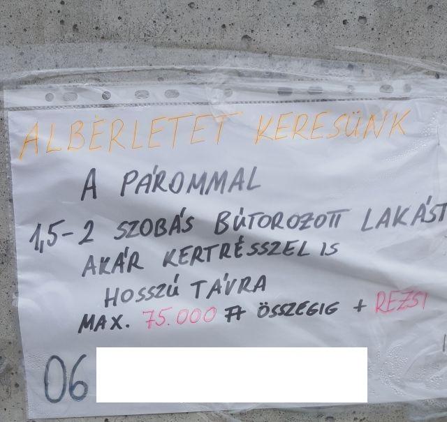 budapesti albérlet kiadó lakás 2 szobás lakás lakáshirdetések ingatlan marketing ingatlanműhely