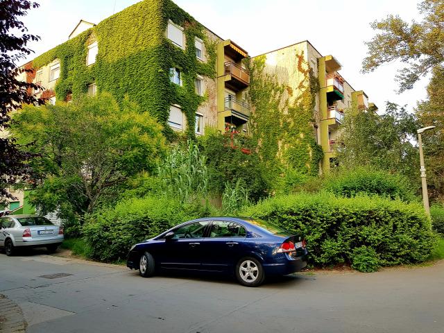 albérletpiac lakáspiac ingatlanmarketing ingatlan 2019 Magyarország Ingatlanműhely