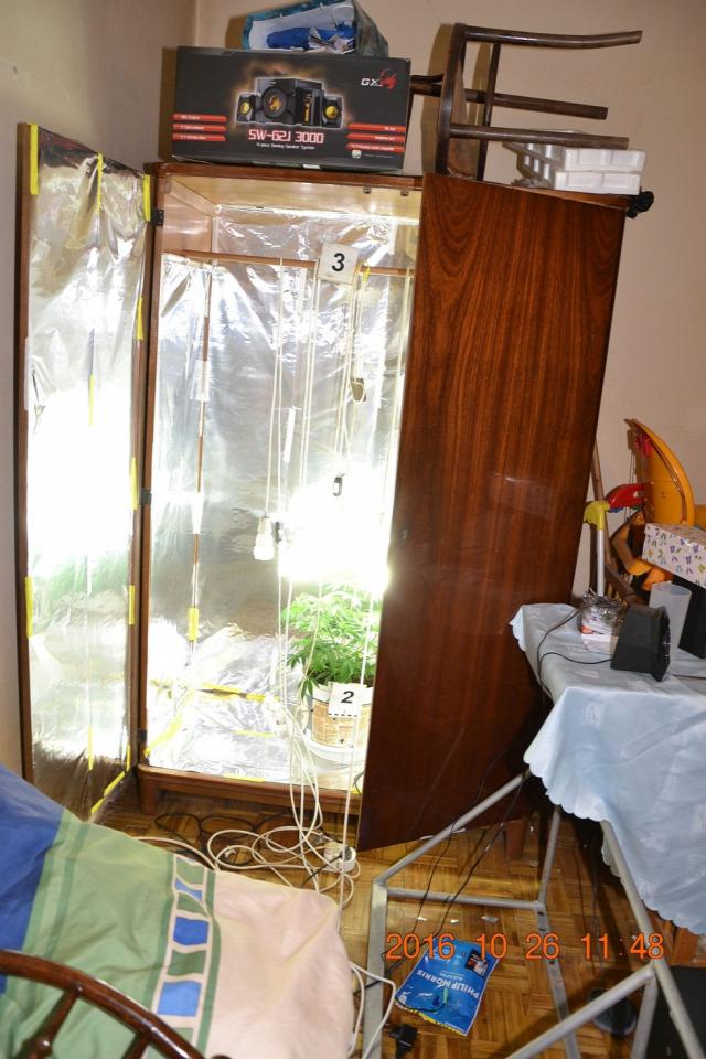 drog drogtermesztés bűncselekmény police.hu albérlet ingatlanműhely