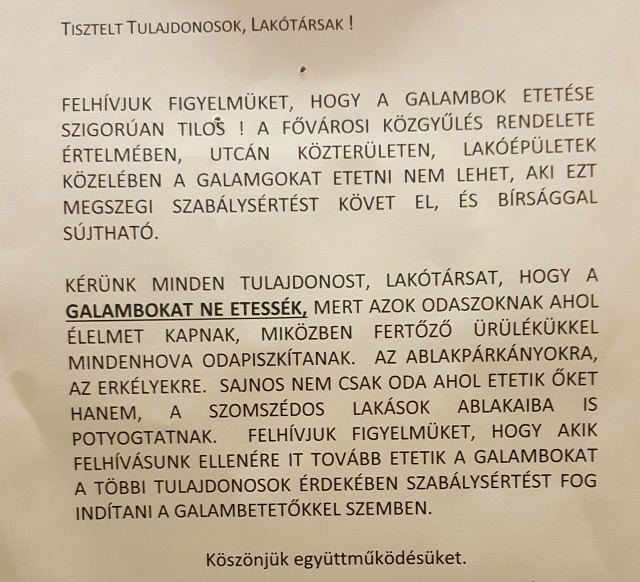 ágyi poloska poloskatérkép Budapest Magyarország Ingatlanműhely
