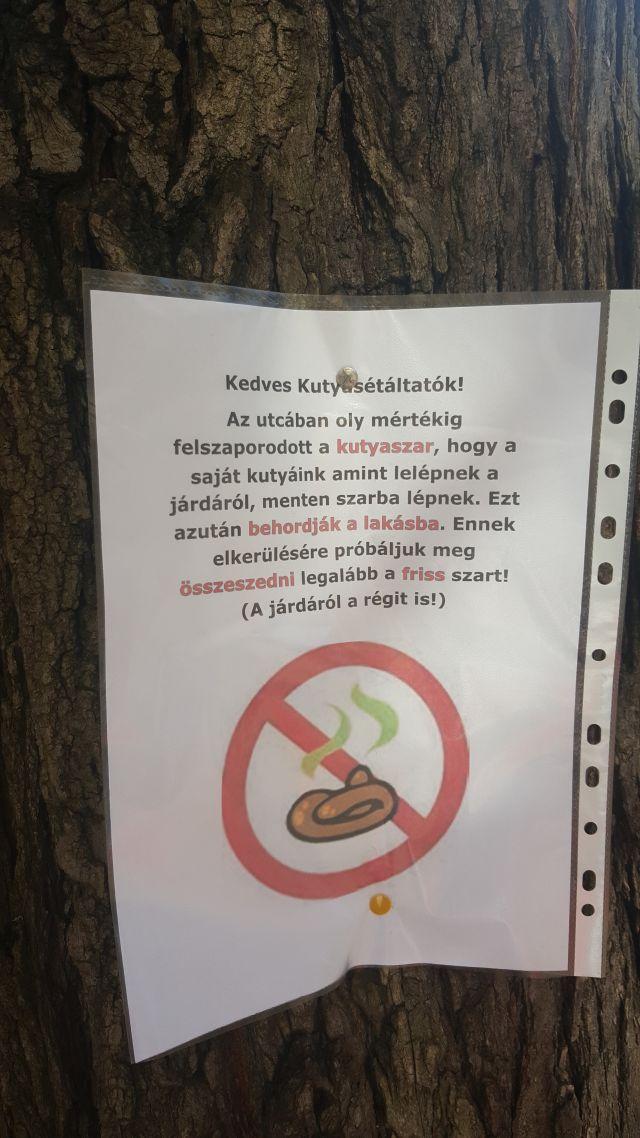 házikedvenc kutya kutyasétáltatás kutyapiszok kutyagumi Budapest Ingatlanműhely