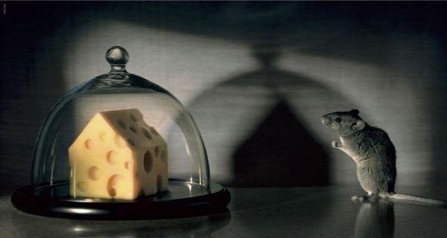 otthonbiztosítás lakásbiztosítás kárbejelentés kárszakértő kárigény társasház biztosítás