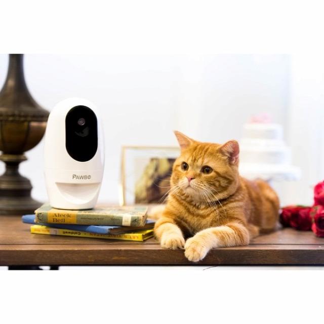 feladat okos otthon otthonautomatika vezetéknélküli kamera