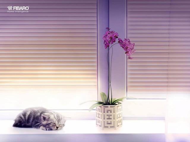 okosotthon otthonautomatika lakásfelújítás felújítás dekoráció otthon design otthon design tippek