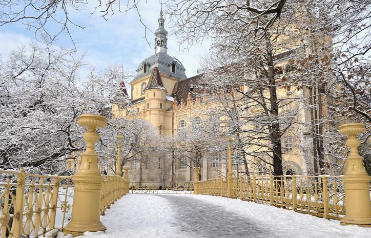 Városliget Liget Budapest Projekt Tél