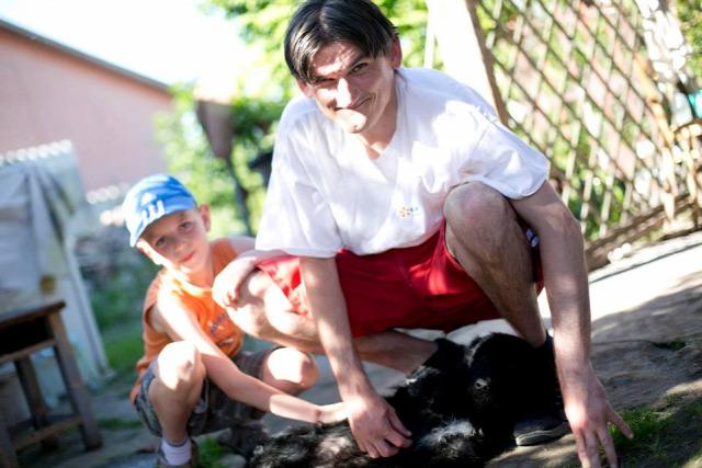 allatsprint kutya szeretet állat