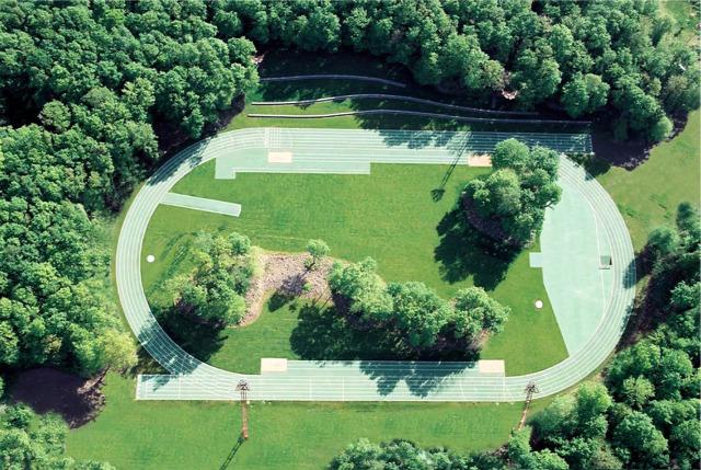 fák stadion építés környezetvédelem építészet archichat füles mezei dániel kendik géza