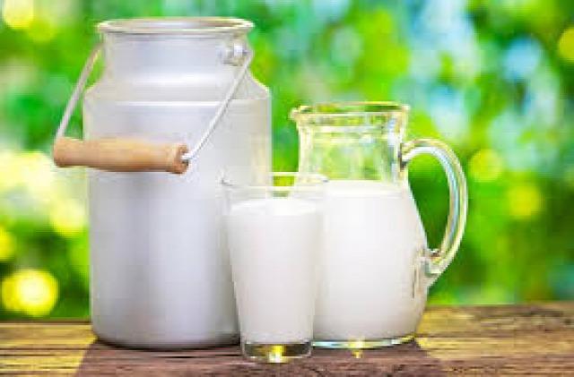 egészség tej intolerancia allergia