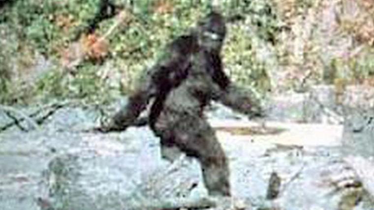 hírek Bigfoot