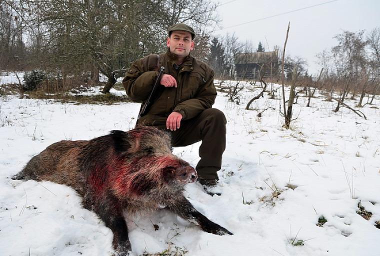 hírek vadászat zsákmány belterület Miskolc Pecze István