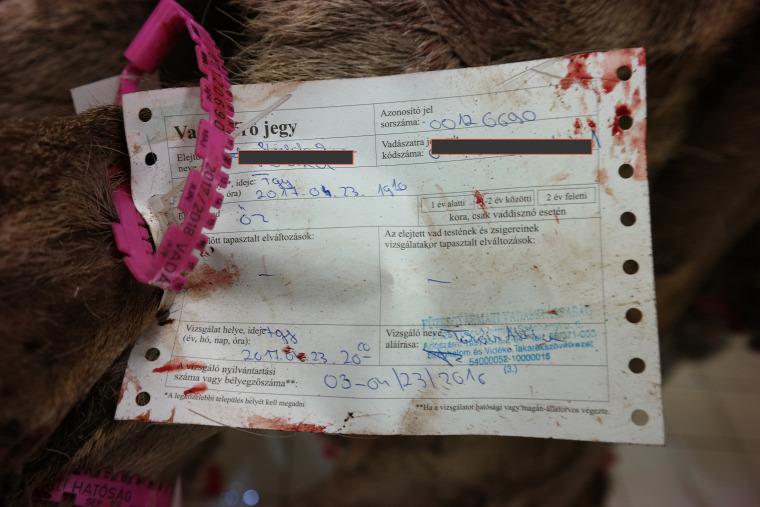 zsákmány Fiwi-Hűt Gyenes Sándor vadfeldolgozó vadászat plusz