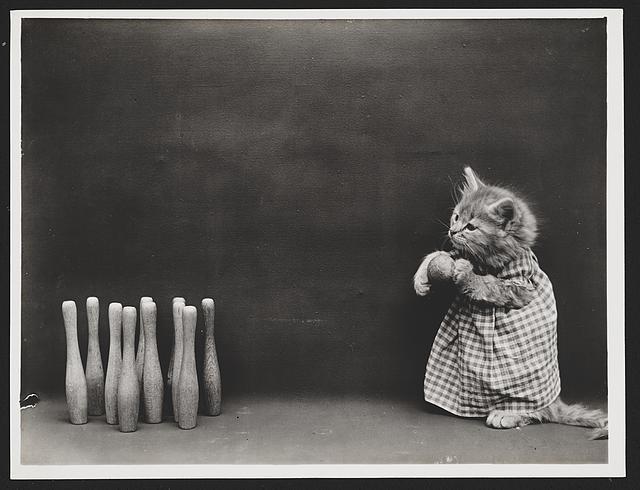 fotó fotóművészet régi