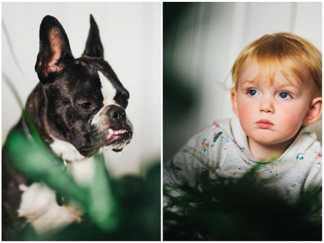 fotóművészet gyerekek szép cuki kutya