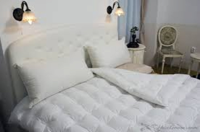 Hungarian Goose Down comforters Down bedding  Hungarian goose down  down feathers