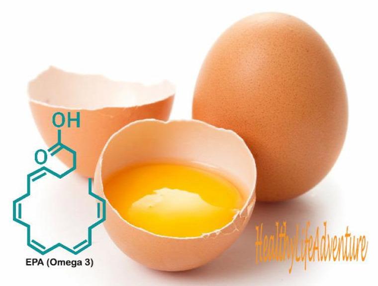 tojás tojásfehérje tojássárgája fehérje sárgája vitamin zsírsav omega-3 EPA DHA lutein zeaxanthin karotinoid retinol kolin avidin koleszterin hormonok