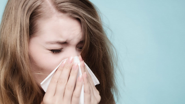 allergia egészség pollen parlagfű kiemelt