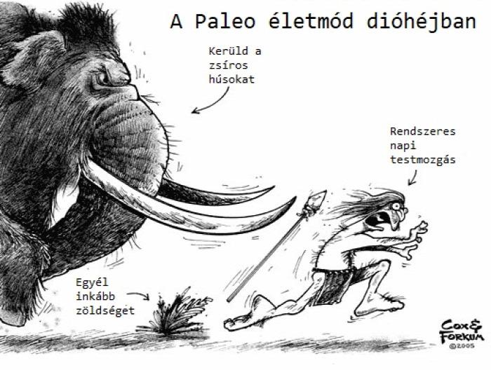 Paleolit táplálkozás étrend gabona glutén