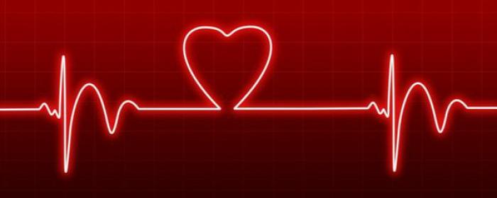 egészség egészségünkre test szív gyümölcs zöldség fokhagyma olívaolaj omega-3 vörösbor étcsokoládé gingko mozgás kardiovaszkuláris táplálkozás