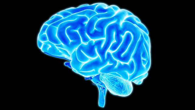 tények tévhitek egészség hátfájás stroke agy test táplálkozás