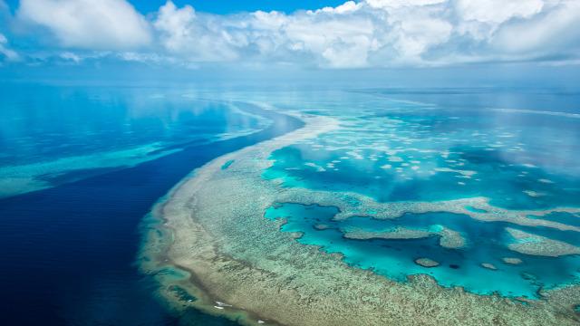 egészség stressz lélek psziché test tenger víz nyár