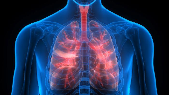 COPD tüdő egészség