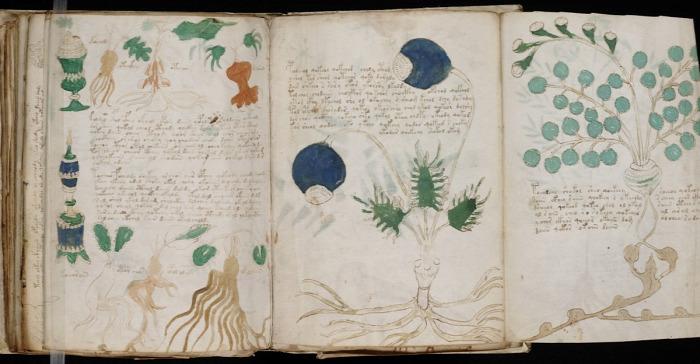 Voynich-kézirat rejtély tudomány mesterséges intelligencia történelem kultúra starlight history