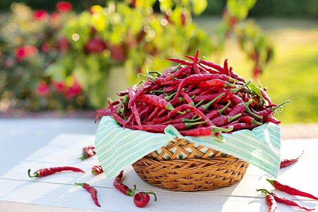 india fűszerek egzotikus