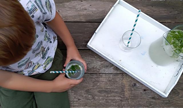 DIY csináldmagad kert menta gasztro