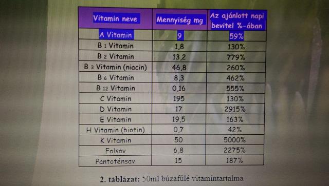 egészség búzafű búzafűlé vitaminok megfázás influenza vegetáriánus
