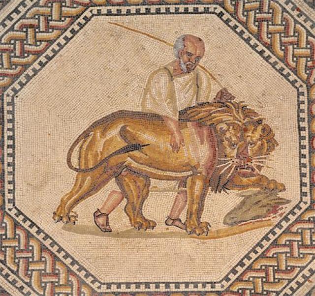 mozaik állatok