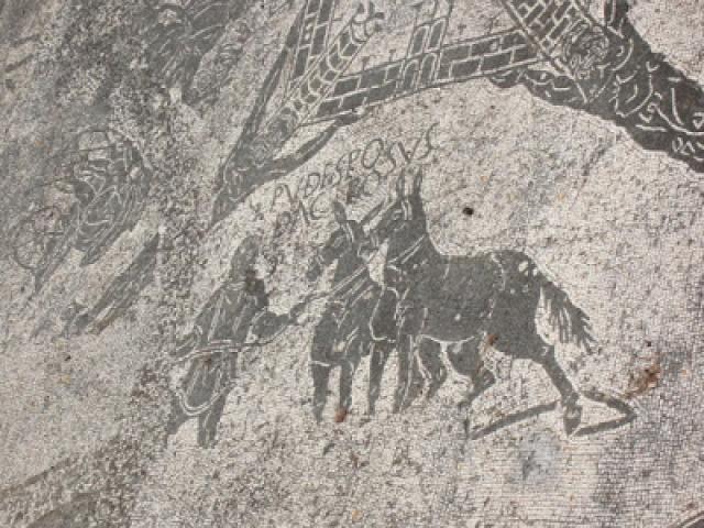 lovak utazás érdekességek