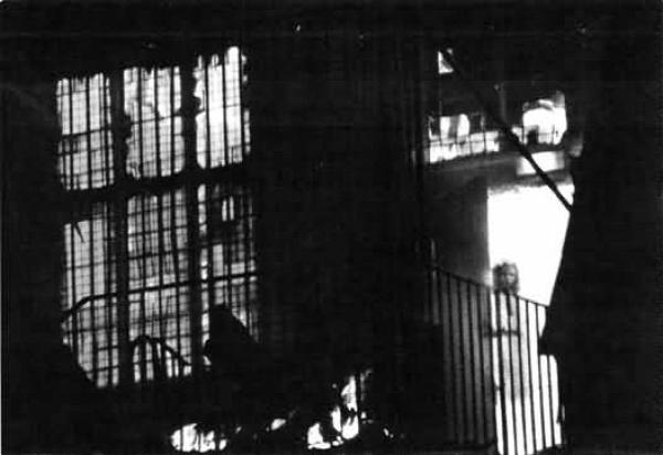 paranormál rejtélyek idegenek szellemek fotók hamisítvány