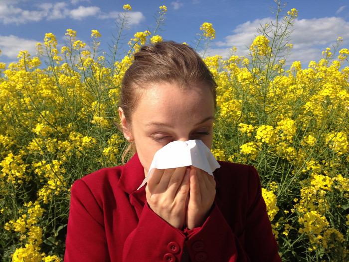 Allergia Pollenallergia