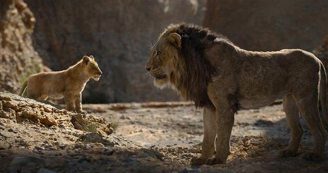 Ver rey leon 2019